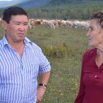 Александр Манзыров посетил хозяйства Усть-Коксинского района