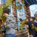 Акция «Чистые окна» прошла в Онгудайском районе