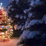 Горно-Алтайск начинает наряжаться к Новому году