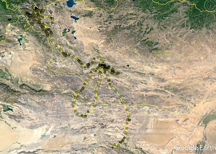 Перелет с Алтая до Тибета через пустыню Гоби. Приключения сокола-балобана продолжаются