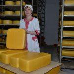 На Алтае поддержат развитие маслосырзаводов