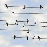 «Музыка весны» и спектакль «Туба» в селах республики (расписание гастролей)