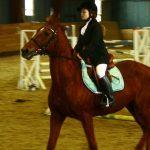 Соревнования по конному спорту в помещении прошли в Горно-Алтайске