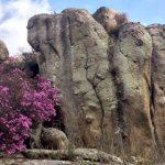 Неустойчивая погода ожидается на Алтае в ближайшие дни
