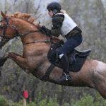Команда Республики Алтай выиграла золото первенства Сибири по конному спорту