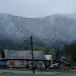 «Маябрь на дворе»: в Западной Сибири и на Алтае в середине мая пошел снег