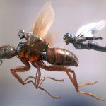 «Человек-муравей и Оса»: еще один летний блокбастер