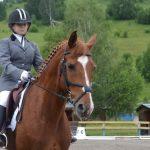 Соревнования по выездке на лошадях и пони прошли в Горно-Алтайске