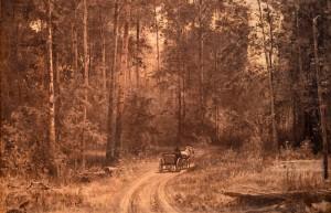 Г.И. Гуркин. Дорога в лесу