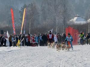 В Манжероке прошли гонки на собачьих упряжках