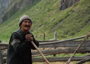Триллер «Болевой порог», который снимали в Горном Алтае, скоро выйдет на экраны